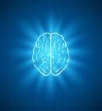 脑子图纸 免版税库存图片