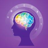 脑子想法 向量例证