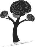 脑子树 库存图片