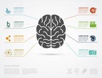 脑子概念 免版税库存照片