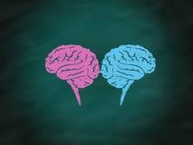 脑子激发灵感概念迷宫难题 库存照片