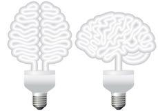 脑子电灯泡eco向量 免版税库存图片