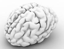 脑子白色 免版税图库摄影