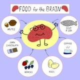 脑子的信息图表适当的营养 免版税库存图片