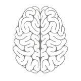 脑子的剪影 免版税图库摄影