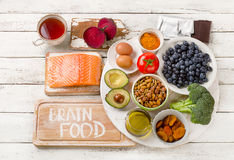 脑子的食物 概念吃健康 免版税库存照片