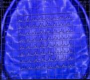 脑子磁反应分光学 库存图片