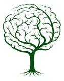 脑子结构树例证 免版税图库摄影