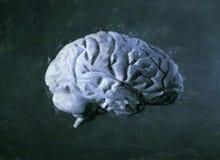 脑子绘画水彩 图库摄影