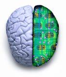脑子计算机科技 免版税库存照片
