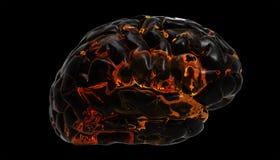 脑子设计火 向量例证