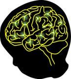 脑子连接数 图库摄影