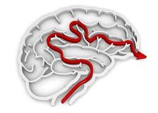 脑子迷宫- 3D 免版税库存照片