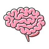 脑子,侧视图,简单的干净的图表,与桃红色着色的黑线艺术 向量例证