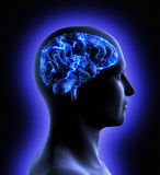脑子活动 免版税库存图片