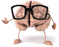 脑子 免版税库存照片