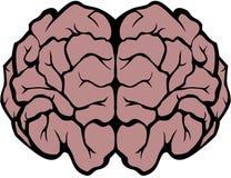 头脑的 免版税库存图片