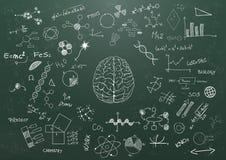 脑科学黑板 免版税图库摄影