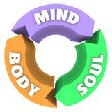 头脑身体灵魂箭头圈子周期健康健康 图库摄影