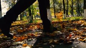 脚人的关闭在秋天公园走 股票视频
