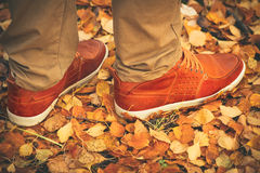 脚供以人员走在室外秋天的叶子 免版税库存图片