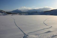 脚印冰冷的湖 库存照片