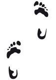 脚印向量 免版税库存图片