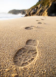 脚印在海滩的沙子详述 库存图片