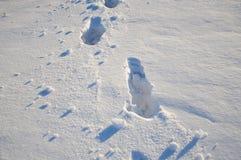 脚印在雪背景中 免版税库存图片
