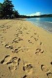 脚印多个沙子 免版税库存照片