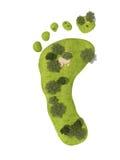 脚印绿色 免版税图库摄影