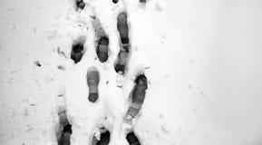 脚印雪时间冬天 在第一雪的脚印 印  图库摄影