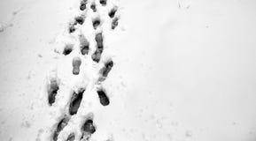 脚印雪时间冬天 在第一雪的脚印 印  免版税图库摄影