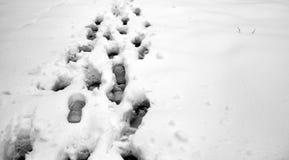 脚印雪时间冬天 在第一雪的脚印 印  免版税库存图片