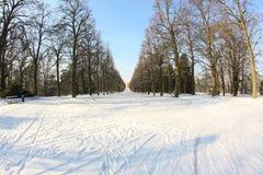 脚印雪时间冬天 库存照片
