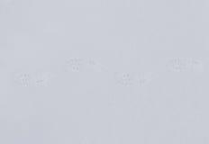脚印雪时间冬天 免版税库存照片