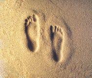 脚印 库存图片