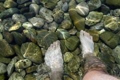 脚在清楚的水中 库存照片