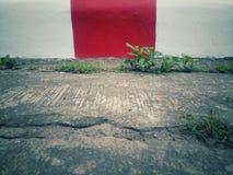 脚在被绘红色和白色区域没有禁止 库存图片