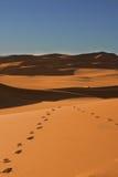脚步在撒哈拉大沙漠-尼日尔 免版税库存图片