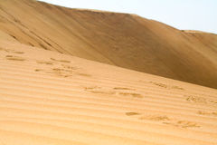 脚步在沙漠 库存照片