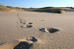 脚步沙子 库存照片