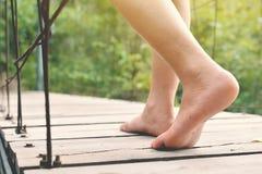 脚走在桥梁的妇女在自然森林里 库存图片