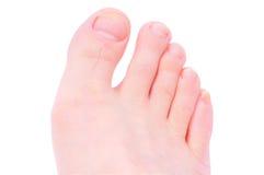 脚趾 免版税库存图片