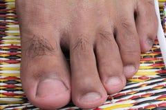 脚趾 免版税库存照片