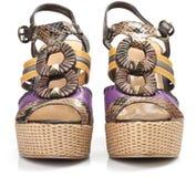 脚跟鞋子妇女 库存图片
