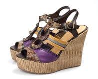 脚跟鞋子妇女 免版税库存照片