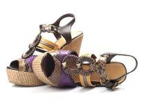 脚跟鞋子妇女 免版税库存图片
