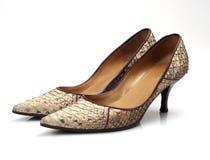 脚跟鞋子妇女 免版税图库摄影