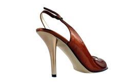 脚跟高夫人鞋子 库存照片